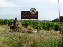 Avignon to Orange - Chateauneuf-du-Pape vineyard