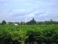 Church comes into view across the vines