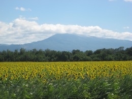 Legendary Mt Ventoux!