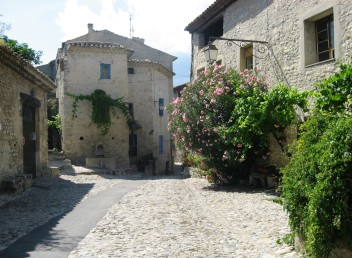 Vaison -flowers and stone buildings