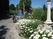 A daisy stop