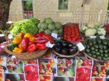 Veges in St Cyprien