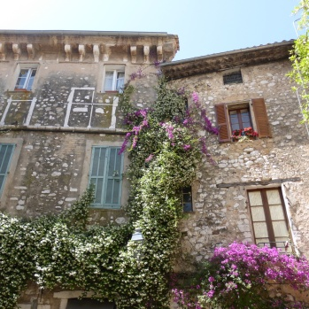 Floral splendour In St Paul de Vence