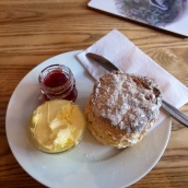 Afternoon tea - scones with clotted cream and jam