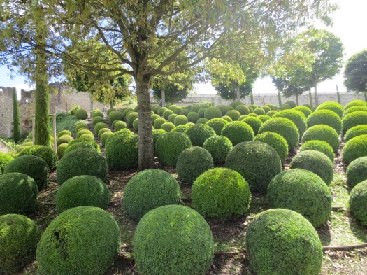 Manicured gardens in the grounds of the Chateau d'Amboise
