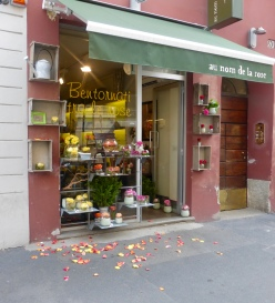 Petals on the pavement in Brera