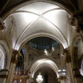 The vaulted roof