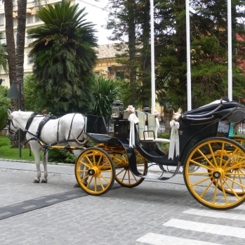 A bridal carriage waiting at the hotel