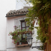 Many windows have flower boxes but the floral displays are not as bright as in high summer
