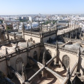 Looking down on the Cathedral