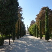 Beautiful cypress lined path leading to the lake