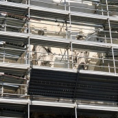 Scupltures behind the scaffolding