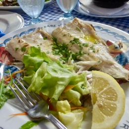 Sea bass - tasty!