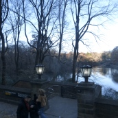 Moody blue Central Park