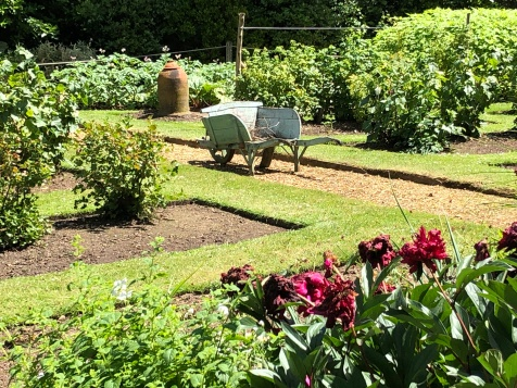 The beautifully kept garden